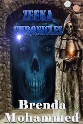 Zeeka_Chronicles_Cover_for_Kindle