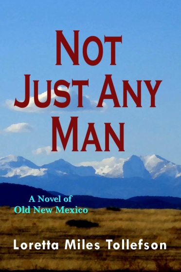 Not Just Any Man ebook cover.final 11 5 18.150 dpi